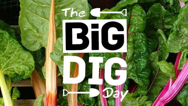 The Big Dig Day